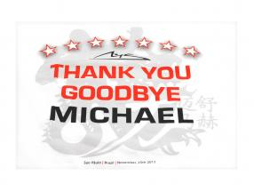 Michael Schumacher T-Shirt Thank You Goodbye Michael Größe S Small