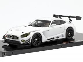 Mercedes-Benz AMG GT3 Race Version white 1:43 Ixo