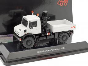 Mercedes-Benz Unimog U 5000 platform truck with crane Gray 1:50 NZG