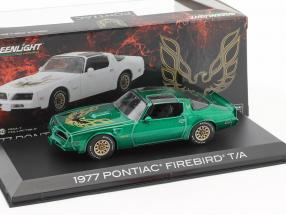 Pontiac Firebird Trans Am Baujahr 1977 grün 1:43 Greenlight