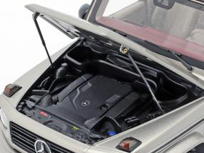 Mercedes-Benz G-Class W463 40 years 2019 mojave silver metallic
