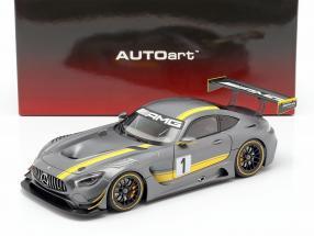 Mercedes-Benz AMG GT3 Presentation Car 2015 gray / yellow 1:18 AUTOart