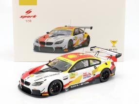 BMW M6 GT3 #42 Winner FIA GT World Cup Macau 2018 Augusto Farfus 1:18 Spark