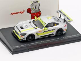 Mercedes-Benz AMG GT3 #48 Winner FIA GT World Cup Macau 2017 Mortara 1:64 Spark