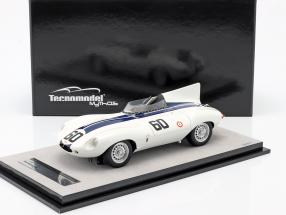 Jaguar D-Type #60 Winner Watkins Glen GP 1955 Johnston 1:18 Tecnomodel